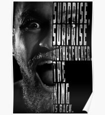 'SURPRISE, SURPRISE MOTHERFUCKER. THE KING IS BACK' Conor McGregor Poster