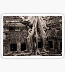 Ta Prohm Temple in Cambodia Sticker