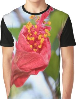 Curled Petals of A Red Hibiscus Bud Graphic T-Shirt