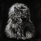 One Big Scary Maine Coon Cat  by Christine Montague