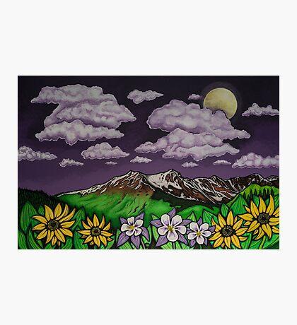 Full Moon Bloom Photographic Print