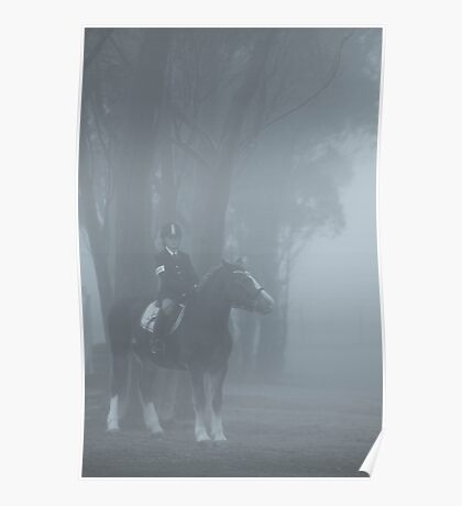 Waiting in the mist Poster