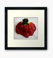 Sweet Delight Framed Print