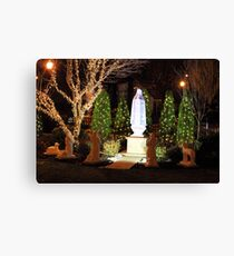 The apparition - Christmas 2013 Canvas Print