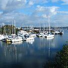 So many boats by Joyce Knorz