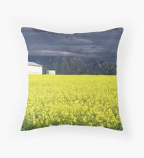 Sunshine After the Storm Throw Pillow