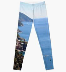The sea and land from Vernazza. Leggings