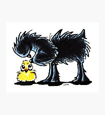 Affen n' Chick Photographic Print