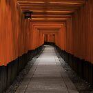 Fushimi Inari Path by Sam Ryan