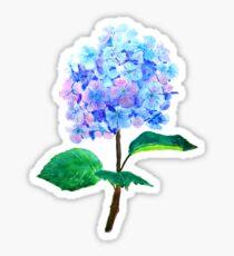blaue lila Hortensie Sticker