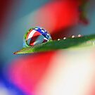Patriotic Rain by Carolyn  Fletcher