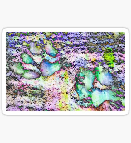 Paw Prints Vibrant Colours Sticker