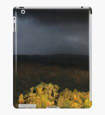 Grasmere iPad Case/Skin