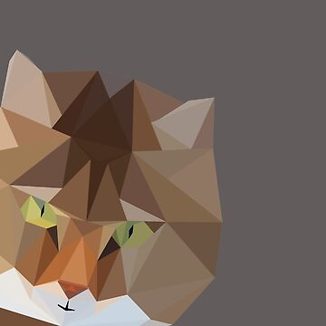 Geometric Cat by paigehavlin