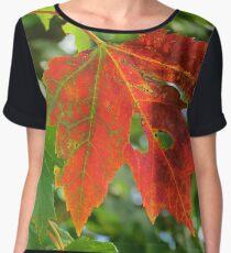 First sign of Autumn Women's Chiffon Top