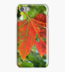 First sign of Autumn iPhone Case/Skin