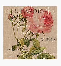 Vintage Burlap Floral 2 Photographic Print