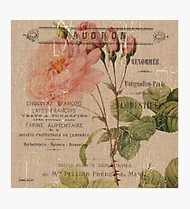Vintage Burlap Floral 4 Photographic Print