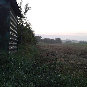 Morning Field by Rogann