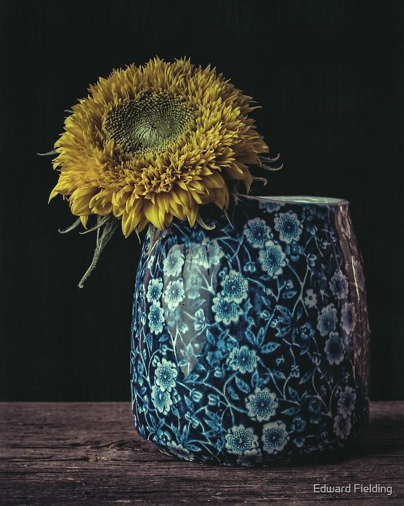 Sunflower by Edward Fielding