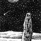 Merrivale Standing Stone, Dartmoor by Barnaby Edwards
