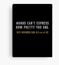 Words Can't Express Canvas Print