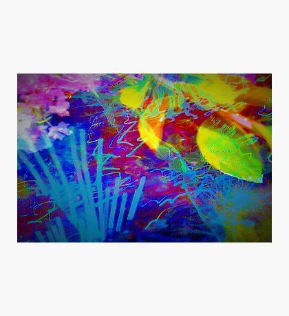 Secret flower party Photographic Print