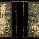 MYST Book by cfischer83