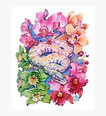 """Year of the Snake"" - Chinese Zodiac Watercolour  Photographic Print"