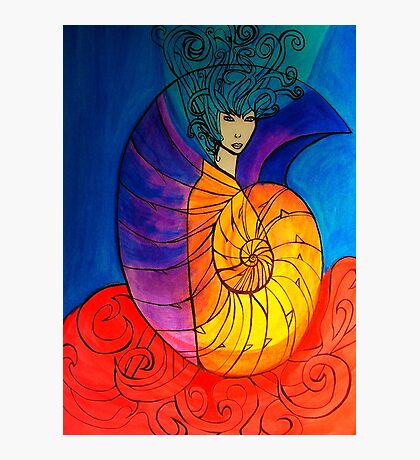Nautilus Muse Photographic Print