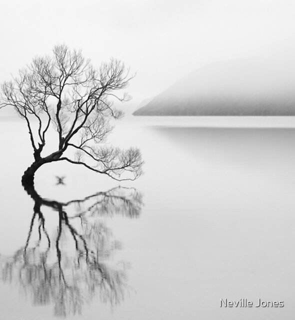 Serenity by Neville Jones