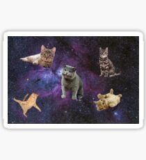 Cats Floating in a Galaxy Sticker