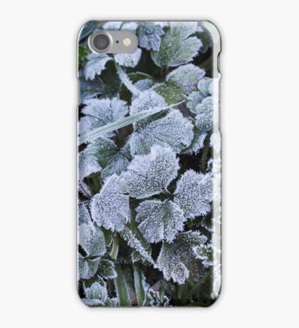 Morning Frost, Dunedin iPhone Case/Skin