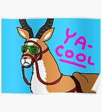 YA-COOL Poster