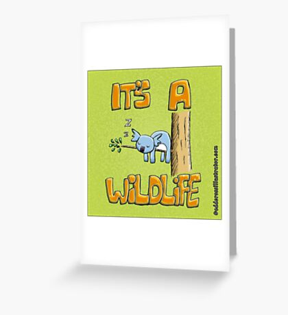 It's a Wildlife - Sleeping Koala Greeting Card