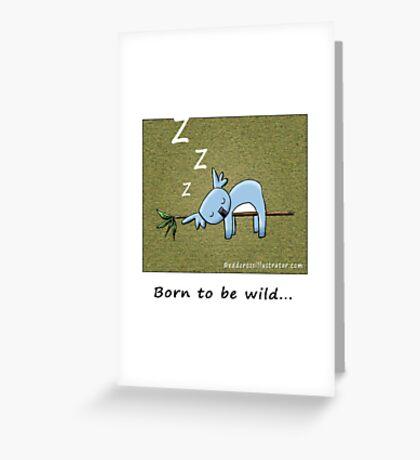 Koala - Born To Be Wild Greeting Card