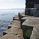 Jetty in Victoria BC by Don Baker