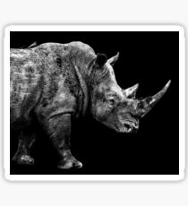 SAFARI PROFILE - RHINO BLACK EDITION Sticker