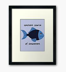 Amusement Fish Framed Print