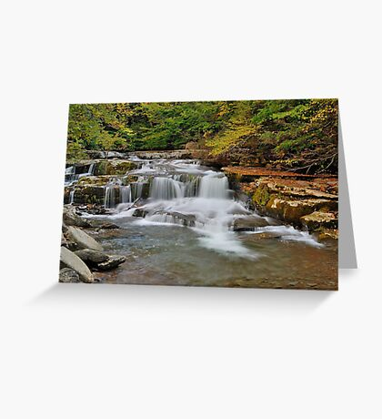 The Roar of Falling Water Greeting Card