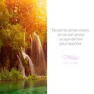 « Ne perds jamais espoir - Citation sur la motivation » par beauxproverbes