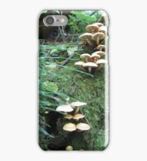 Where Fairies Play iPhone Case/Skin
