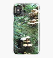 Where Fairies Play iPhone Case/Skin