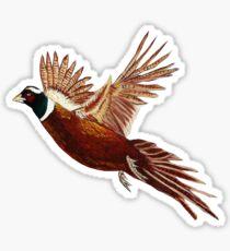 Pheasant  Sticker