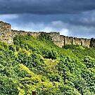 Scarborough Castle by hans p olsen