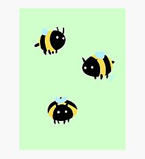 Bumble Bees! Photographic Print