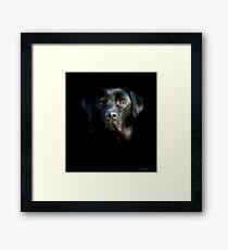 Who's afraid of the dark ? Framed Print