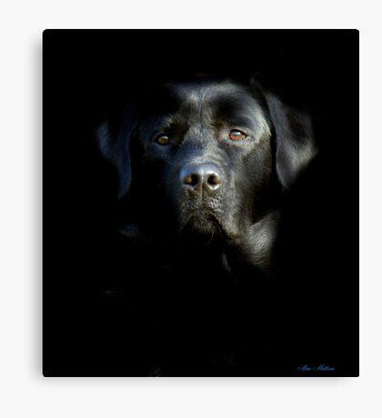 Who's afraid of the dark ? Canvas Print