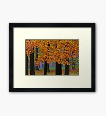 Top selling . Views:23572 ♥.  Forever Autumn   . Eye-catcher - For Sure ! Fav: 76.  Thx friends ! muchas gracias !!! This image Has Been S O L D . Buy what you like!  Framed Print