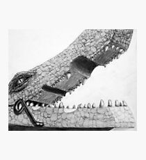 Clothespin Crocodile Photographic Print